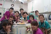 横浜の動物病院で経験のあるトリマーさん募集