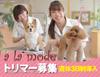 『南鳩ヶ谷駅』新店舗オープン!!動物病院併設のトリミングサロンです(^^)
