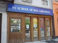 NewYork School of Dog Grooming
